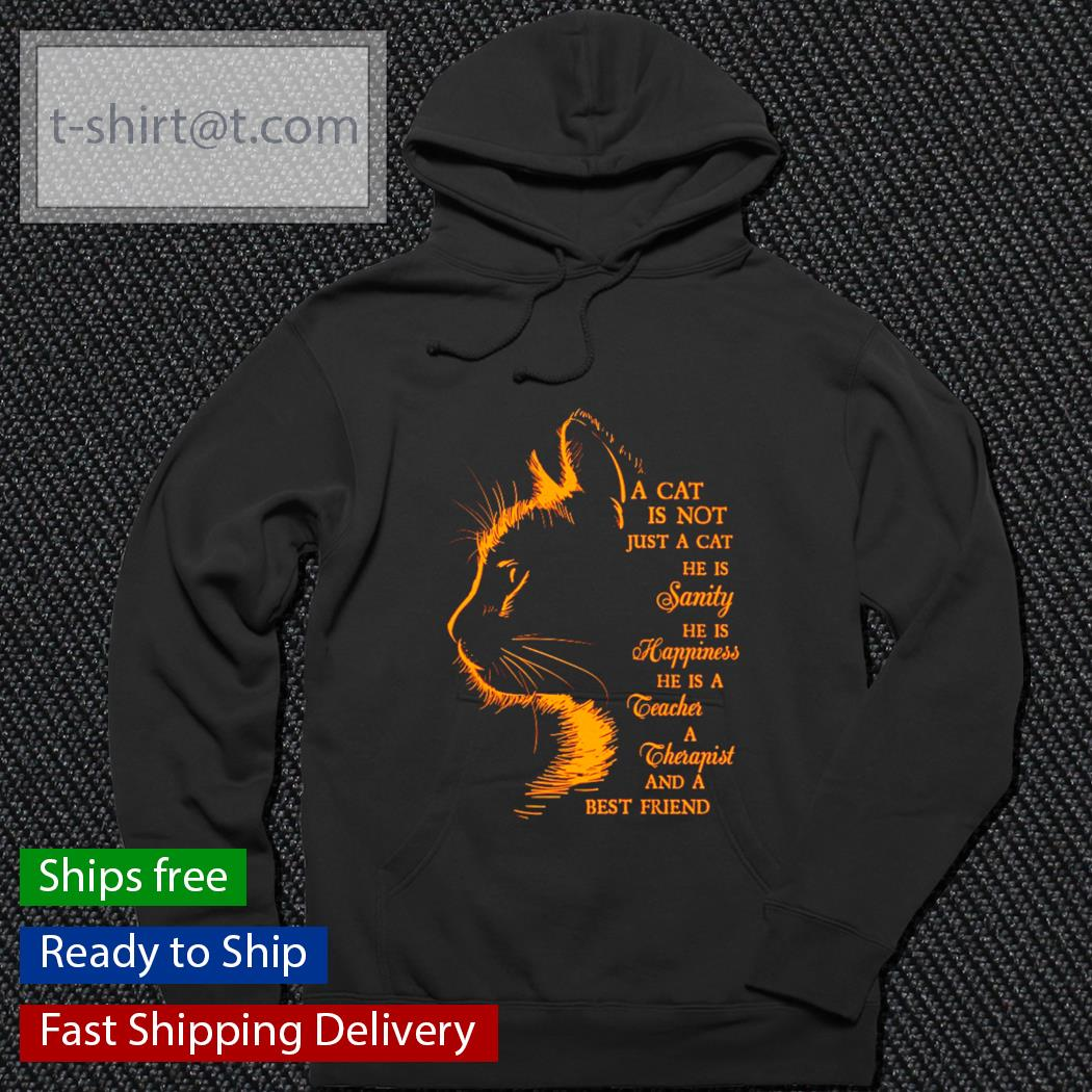A cat is not just a cat he is sanity he is happiness he is a therapist and a best friend s hoodie