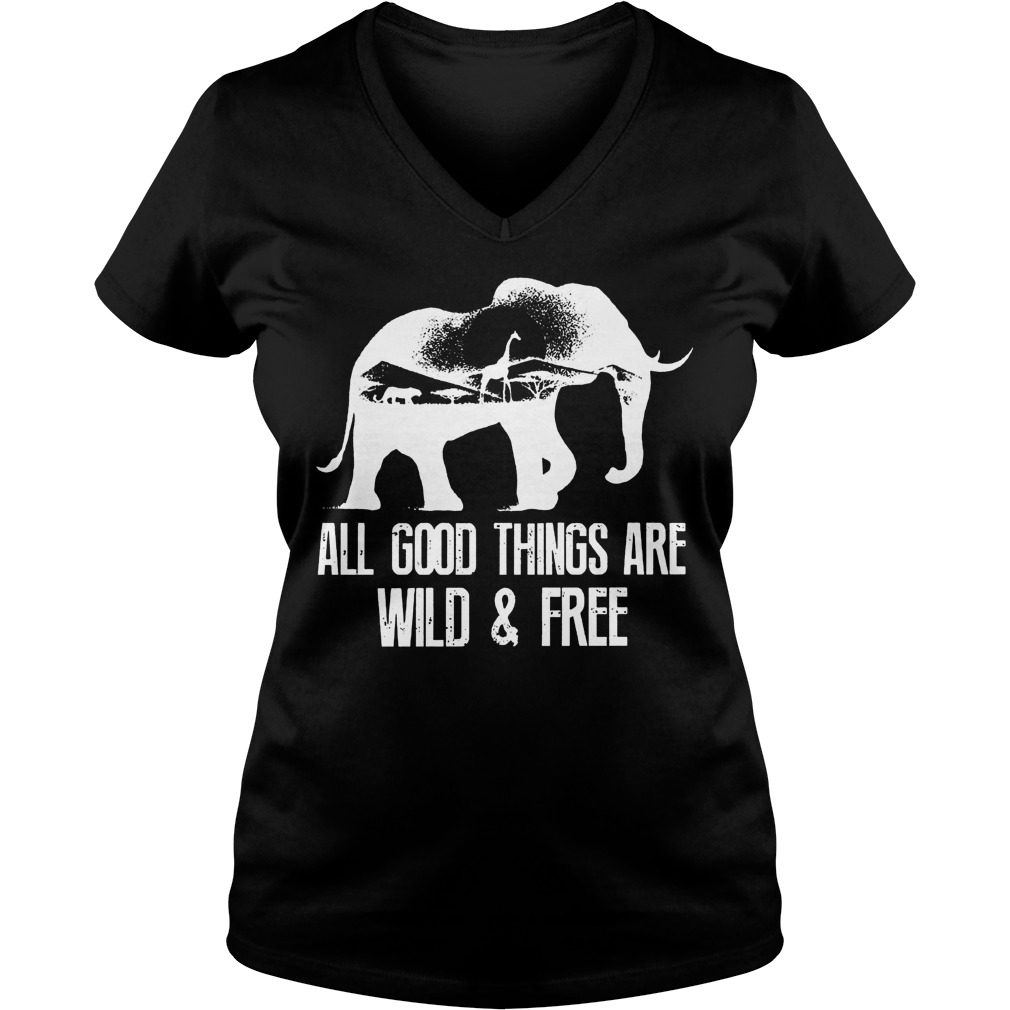 Good Things Wild Free V Neck Shirt