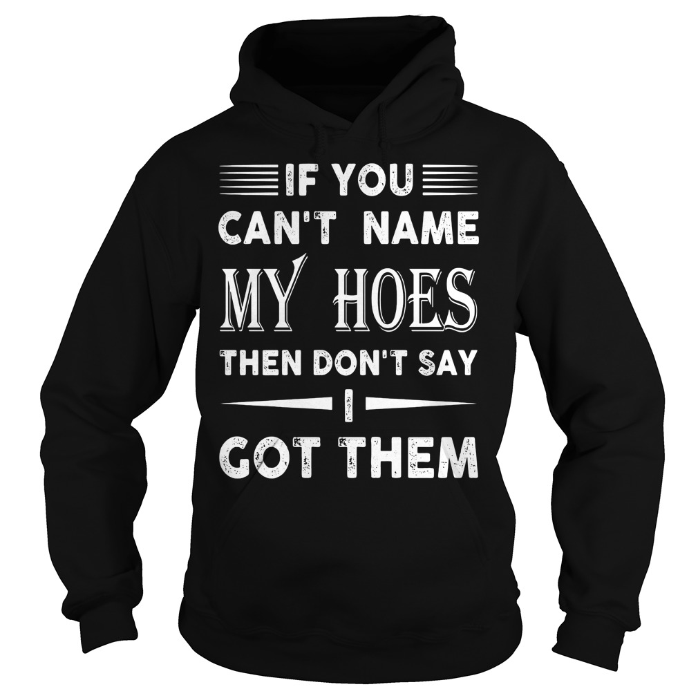 Cant Name Hoes Dont Say Got Hoodie