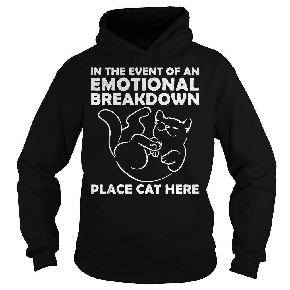 Event Emotional Breakdown Place Cat Hoodie