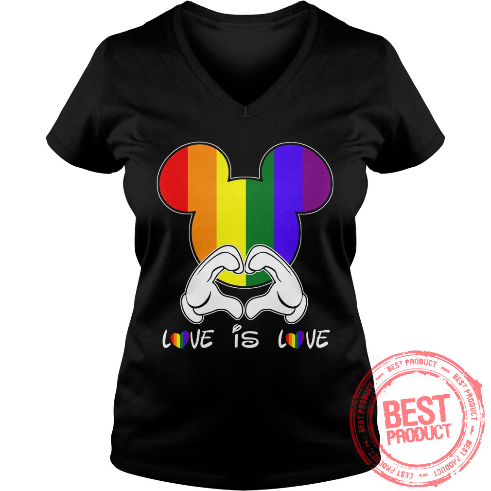 Love Love Lgbt V Neck T Shirt