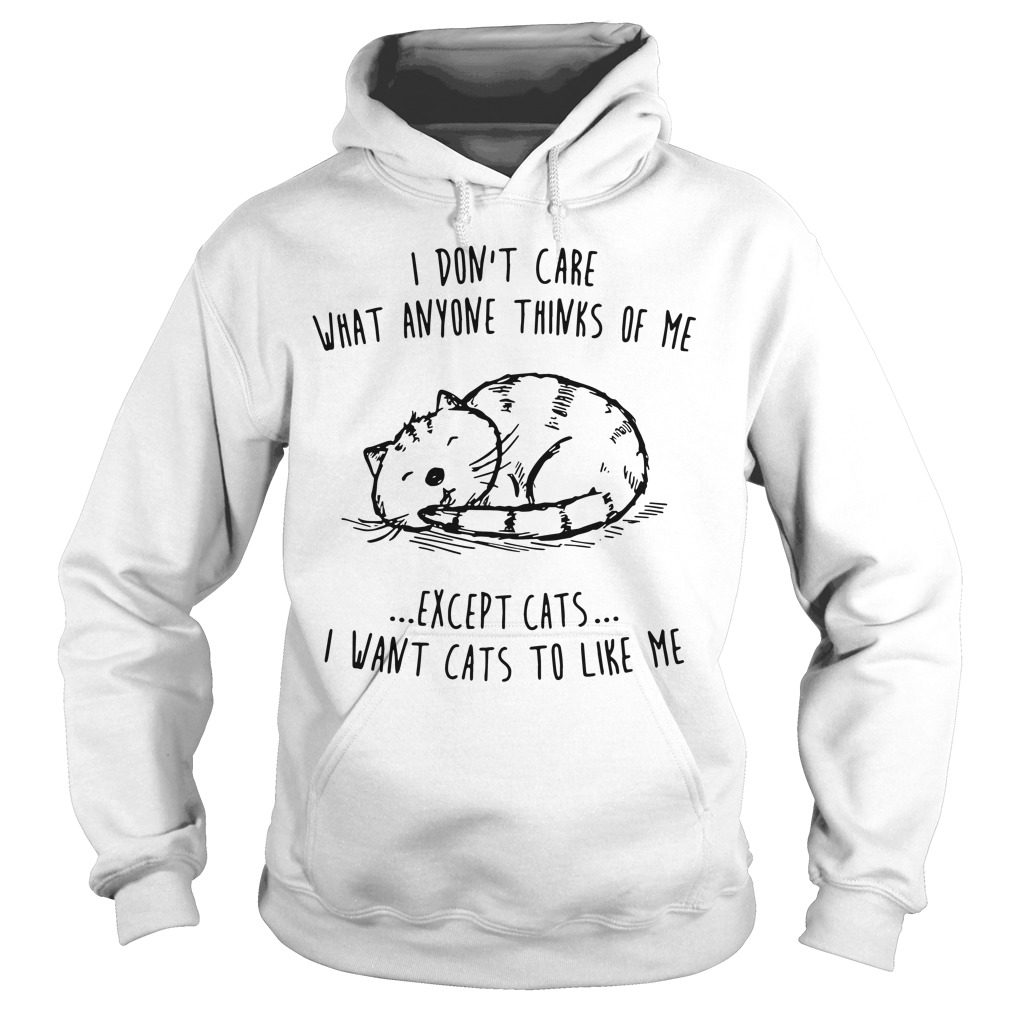 Dont Care Anyone Thinks Except Cats Hoodie