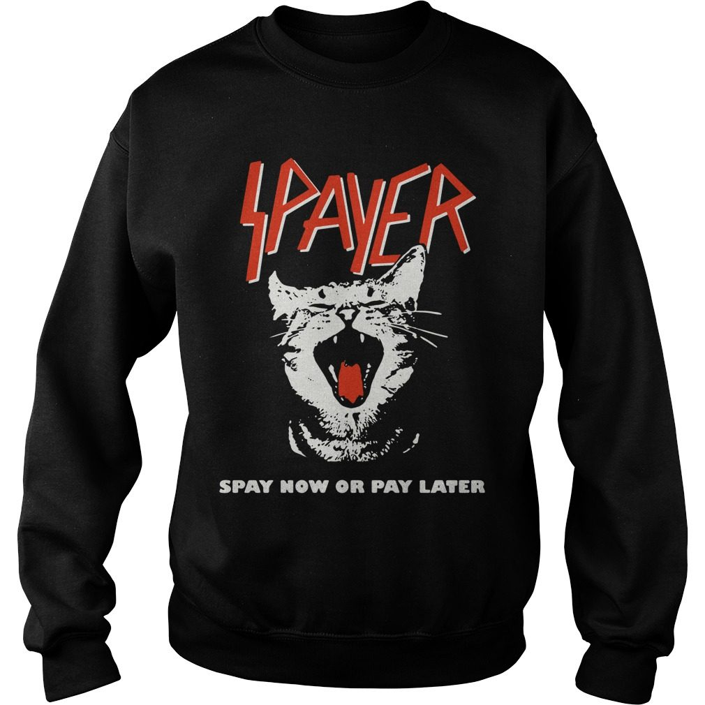 Spayer Spay Now Pay Later Sweater
