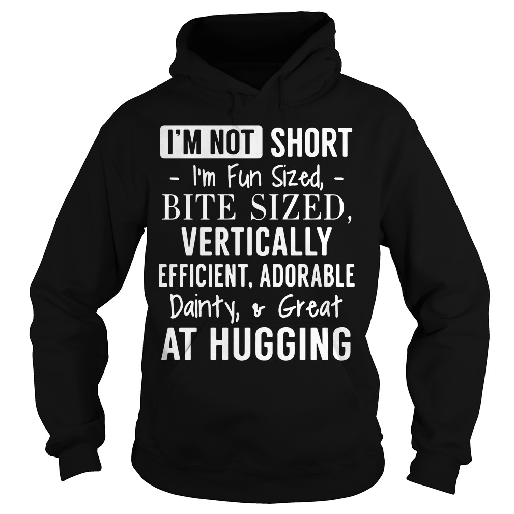 Im Not Short Im Fun Sized Bite Sized Vertically Efficient Adorable Hoodie