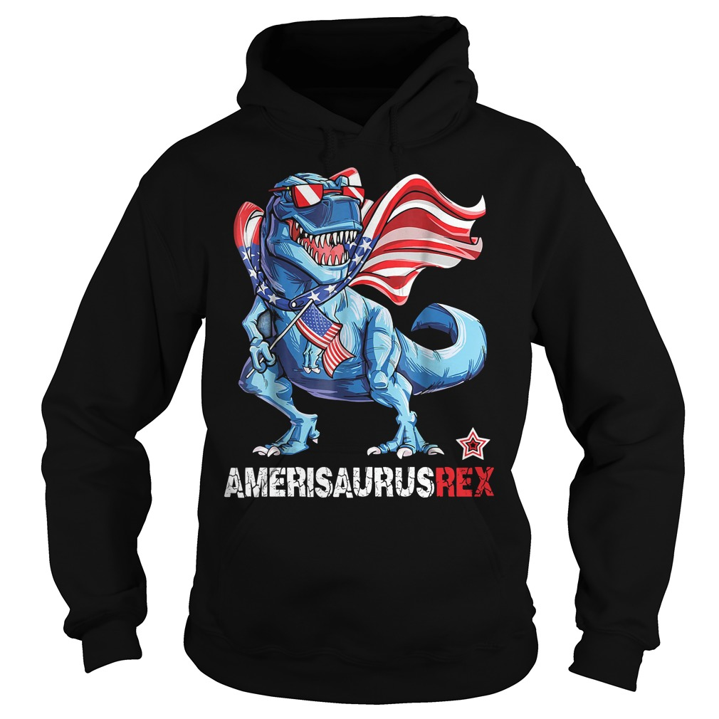 Dinosaur American Flag 4th of July Ameri Saurus rex Hoodie