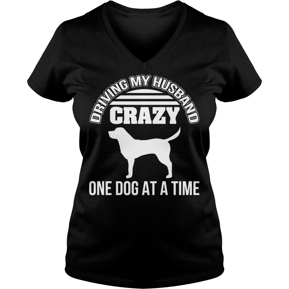 Driving my husband crazy one dog at a time V-neck T-shirt