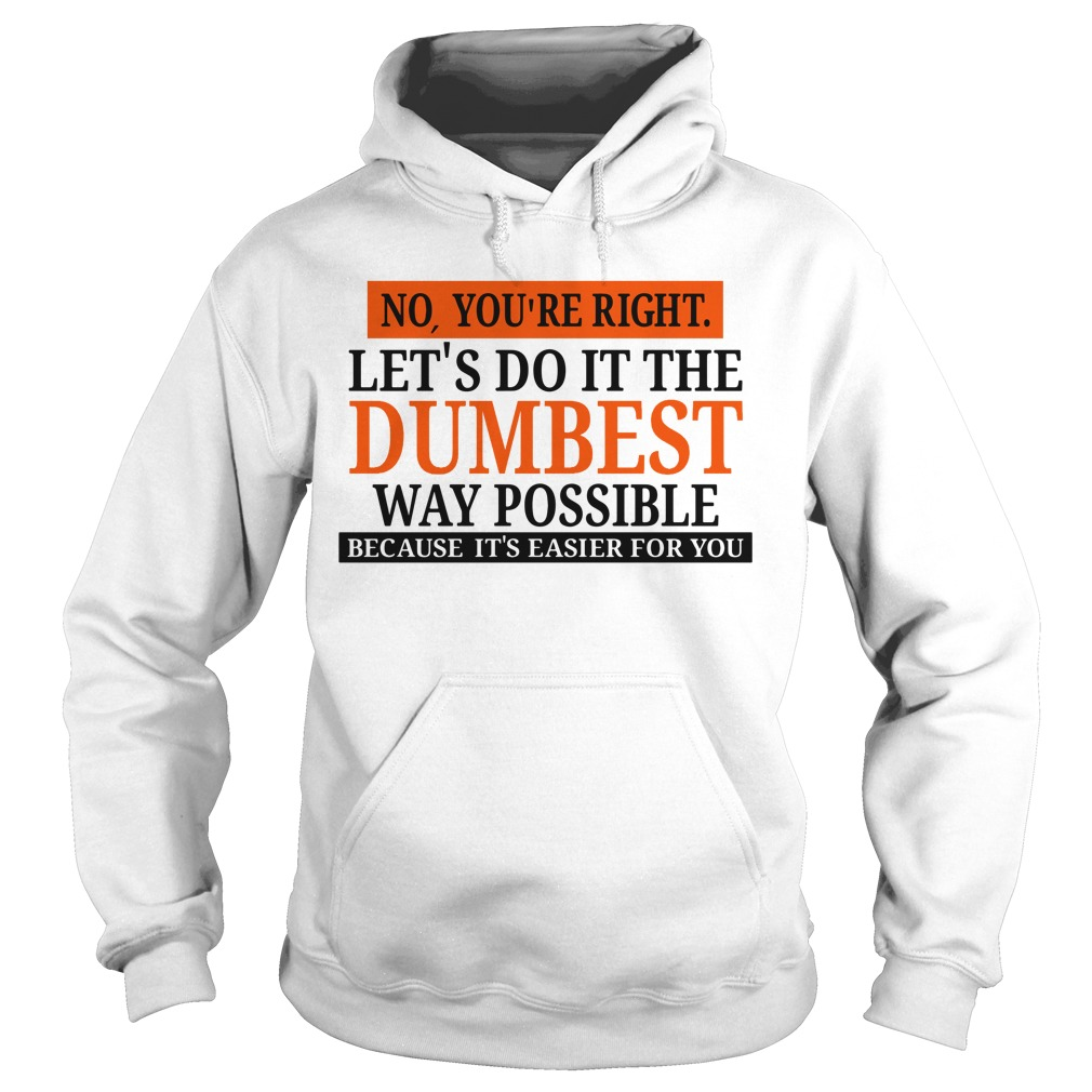 No you're right let's do it the Dumbest way possible Hoodie