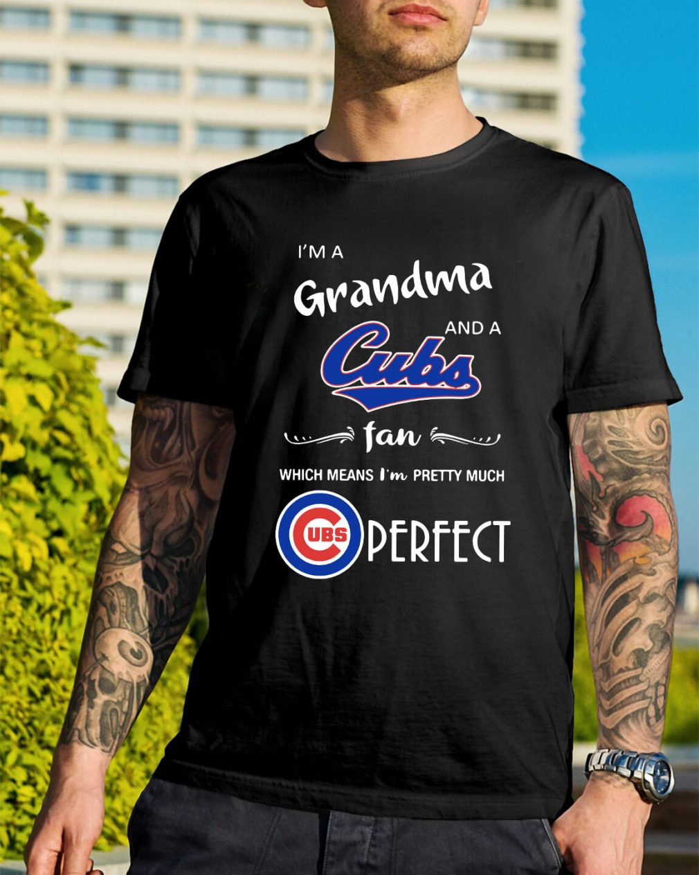 I'm a grandma and a Cubs fan which means I'm pretty much shirt