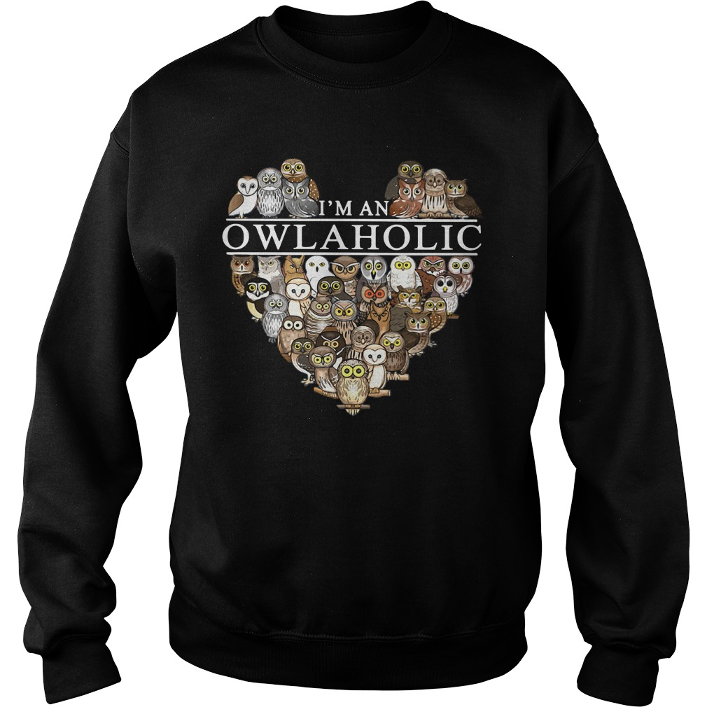 I'm an owl aholic Sweater