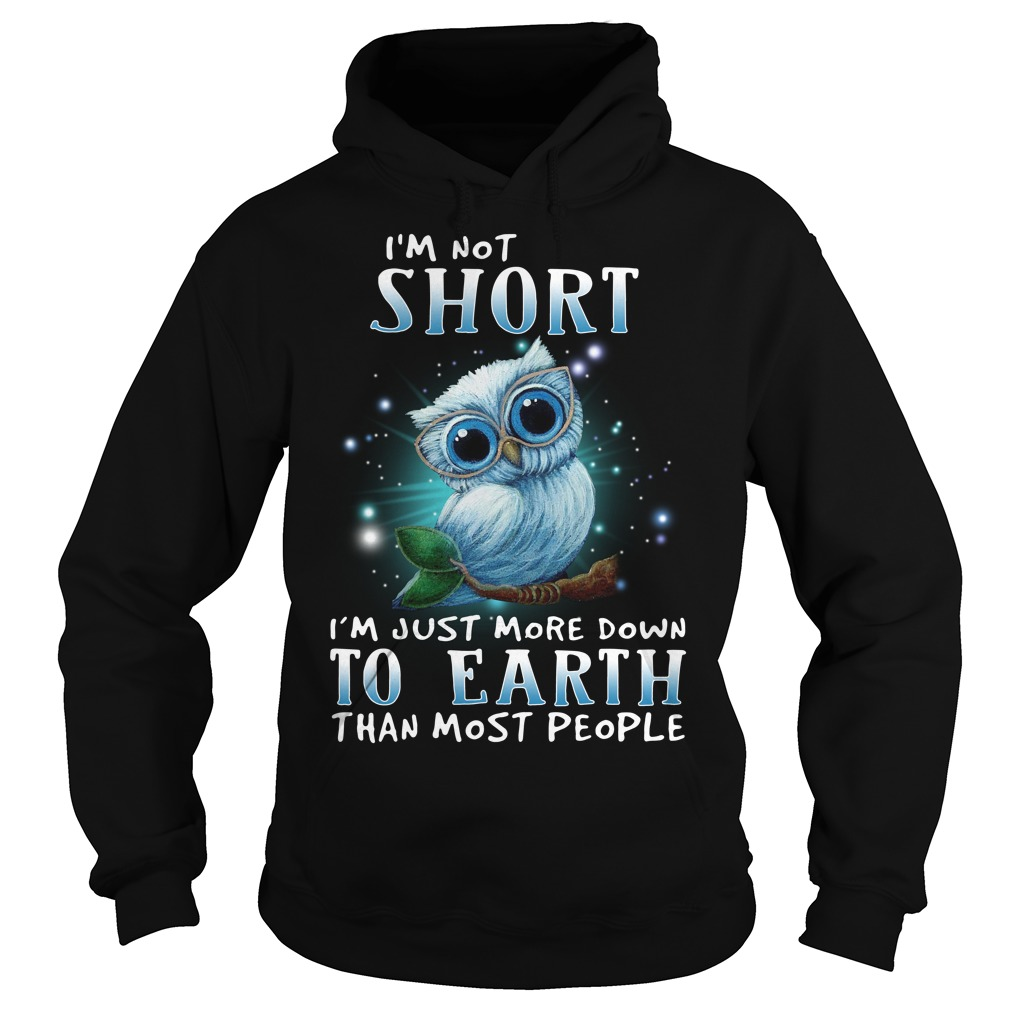Owl I'm not short I'm just more down to earth than most people Hoodie