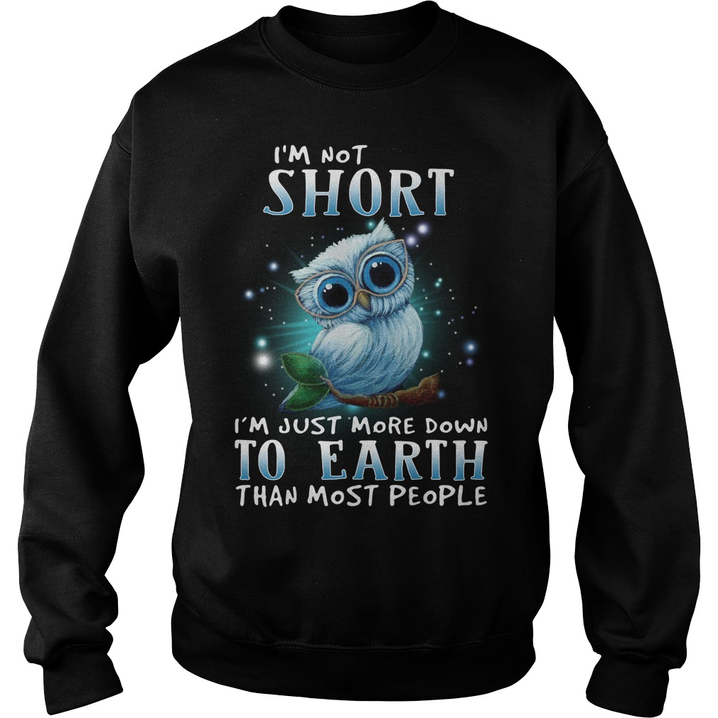 Owl I'm not short I'm just more down to earth than most people Sweater