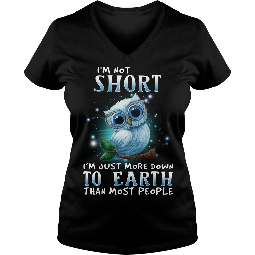 Owl I'm not short I'm just more down to earth than most people V-neck T-shirt