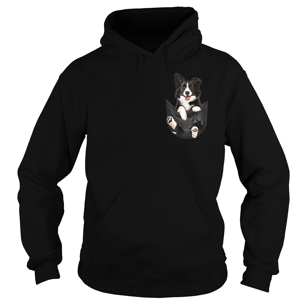 Border Collie dog in a pocket Hoodie