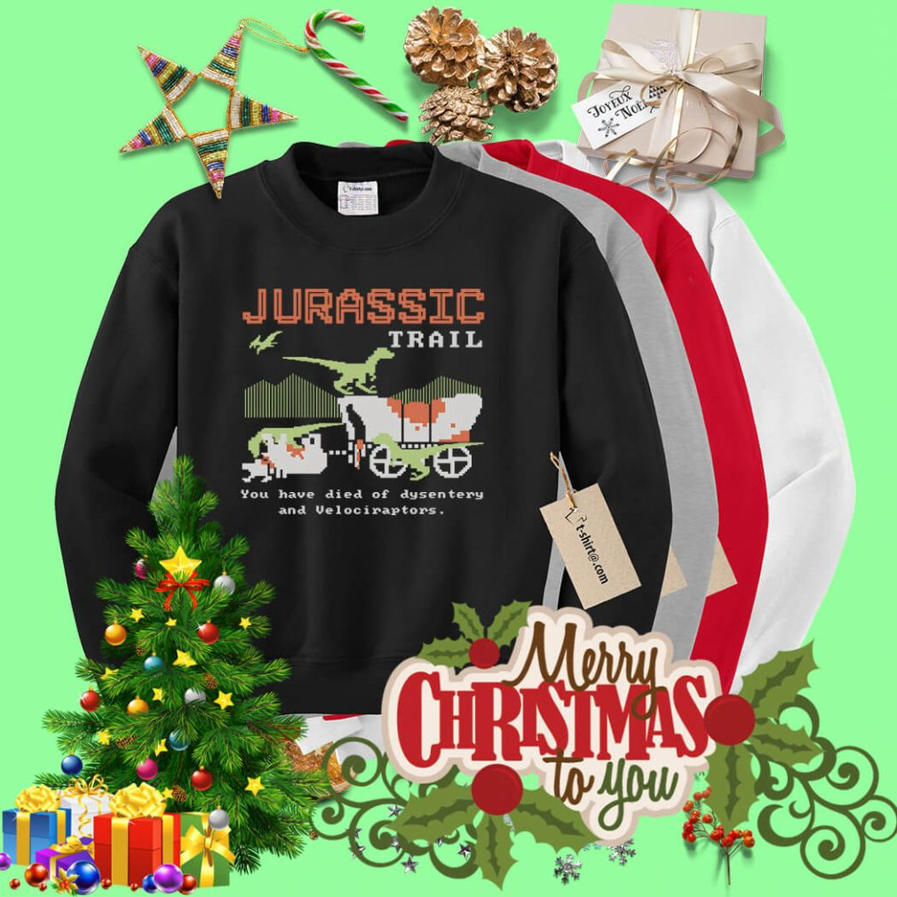 Jurassic trail you have died of dysentery and velociraptors shirt, sweater