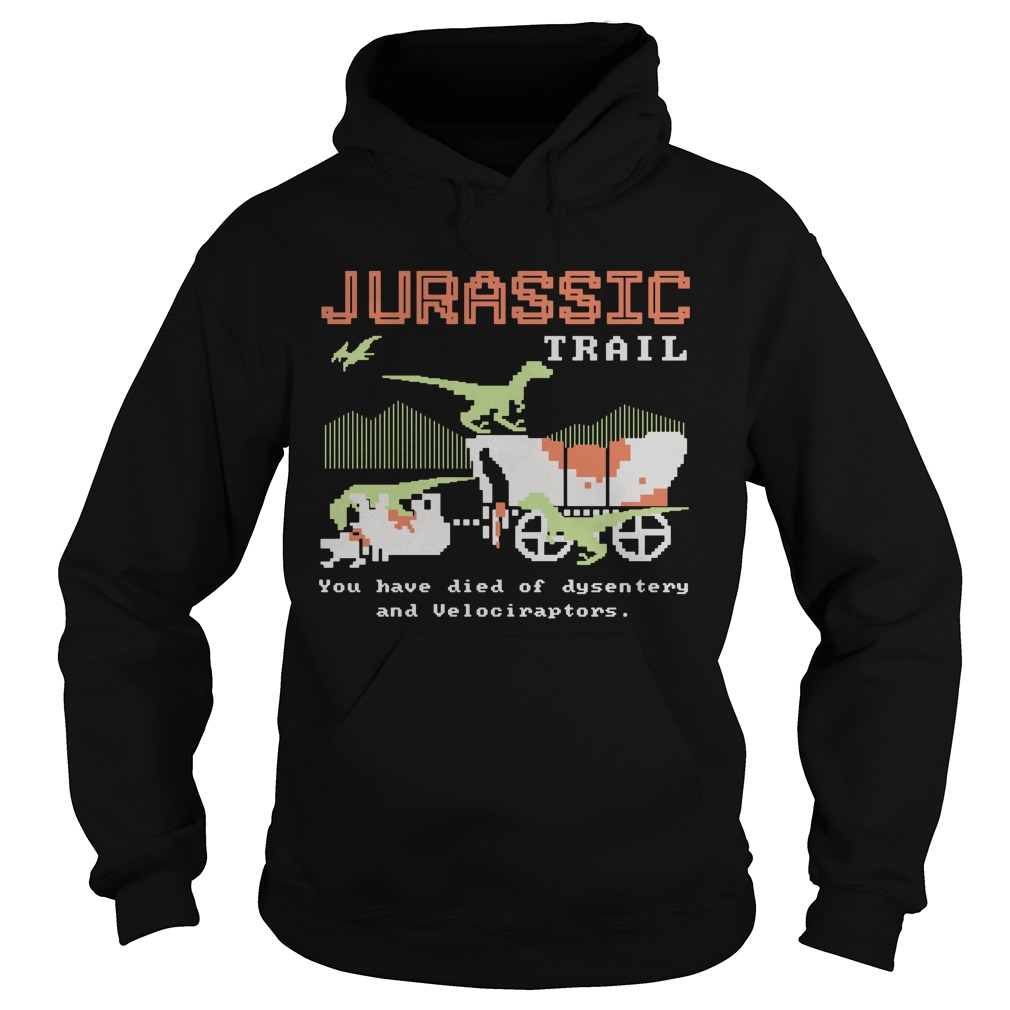 Jurassic trail you have died of dysentery and velociraptors Hoodie
