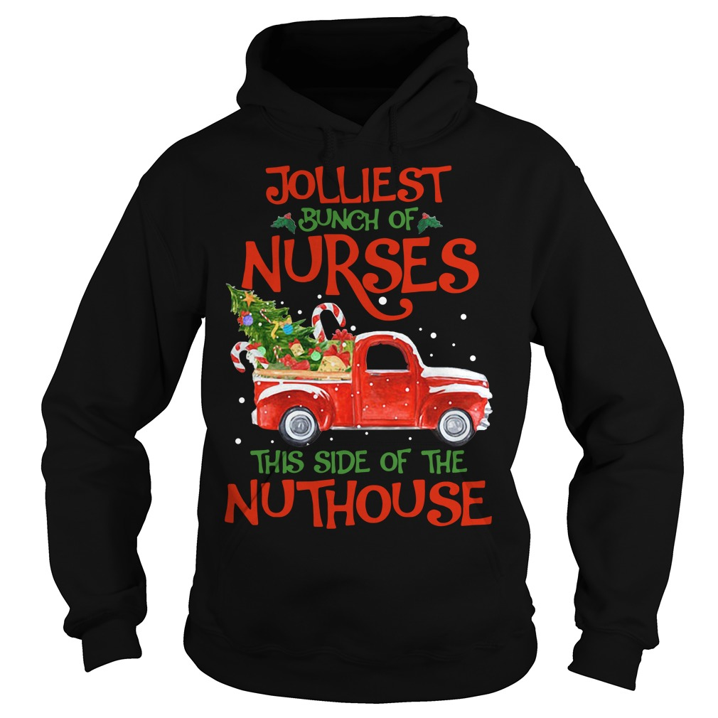 A bunch of a Nurses this side of the Nuthouse Christmas Hoodie
