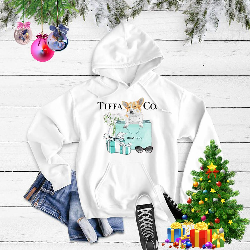 Dachshund Tiffany and CO Sweater