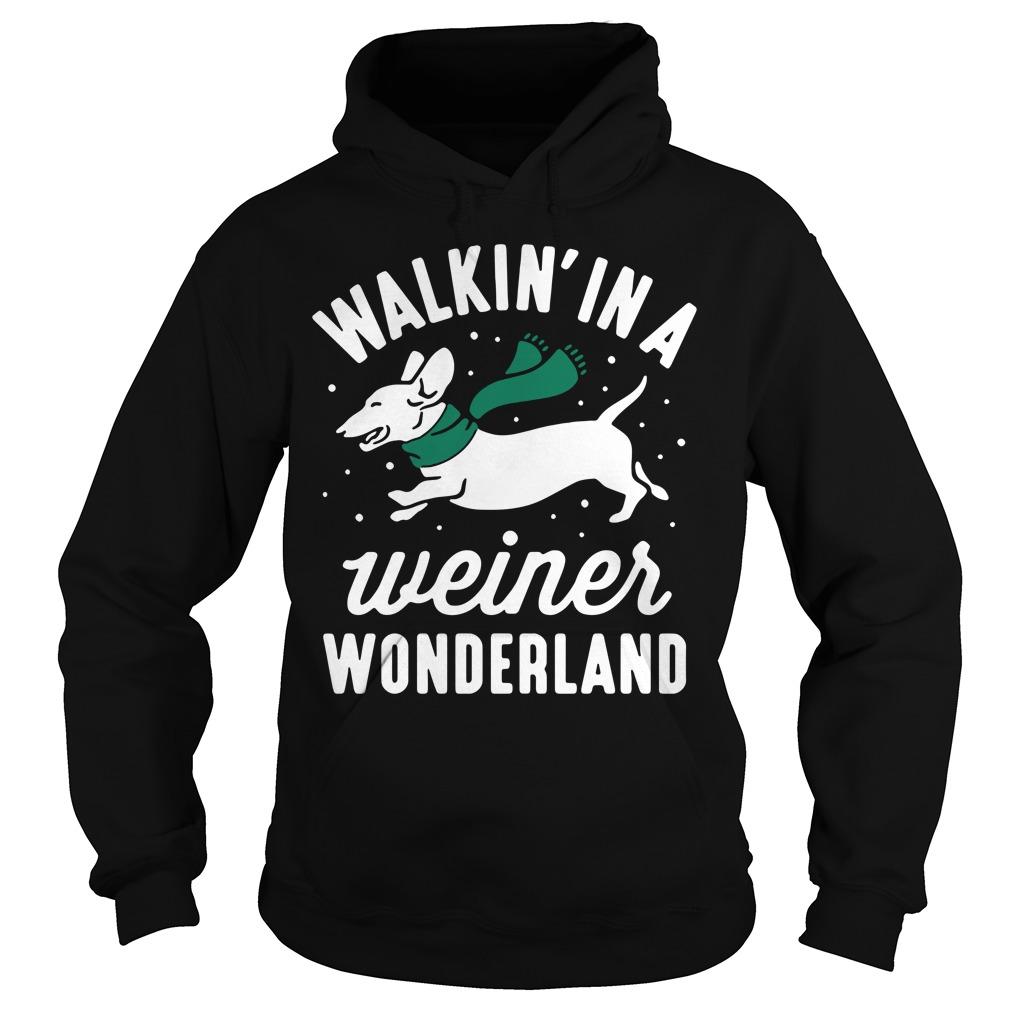 Dashunch walkin' in a Wiener wonderland Christmas Hoodie