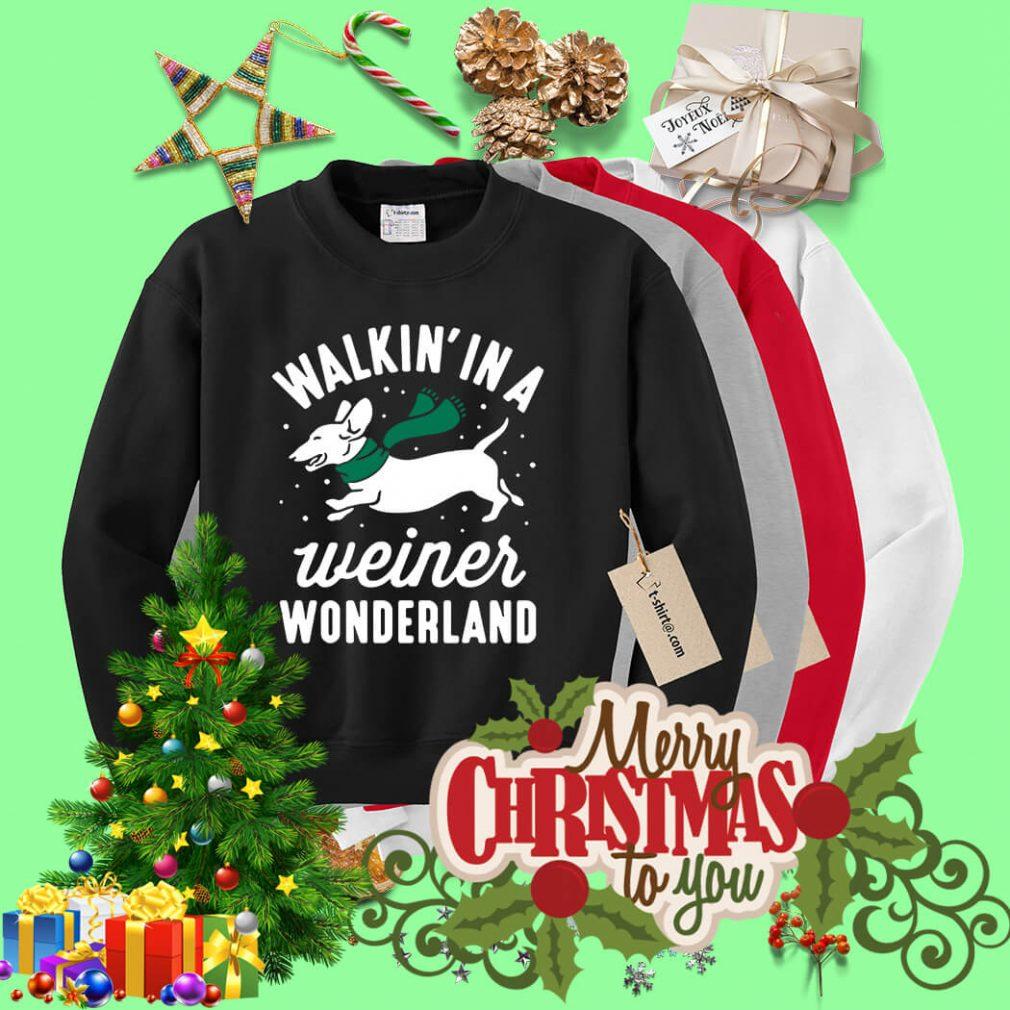 Dashunch walkin' in a Wiener wonderland Christmas shirt, sweater