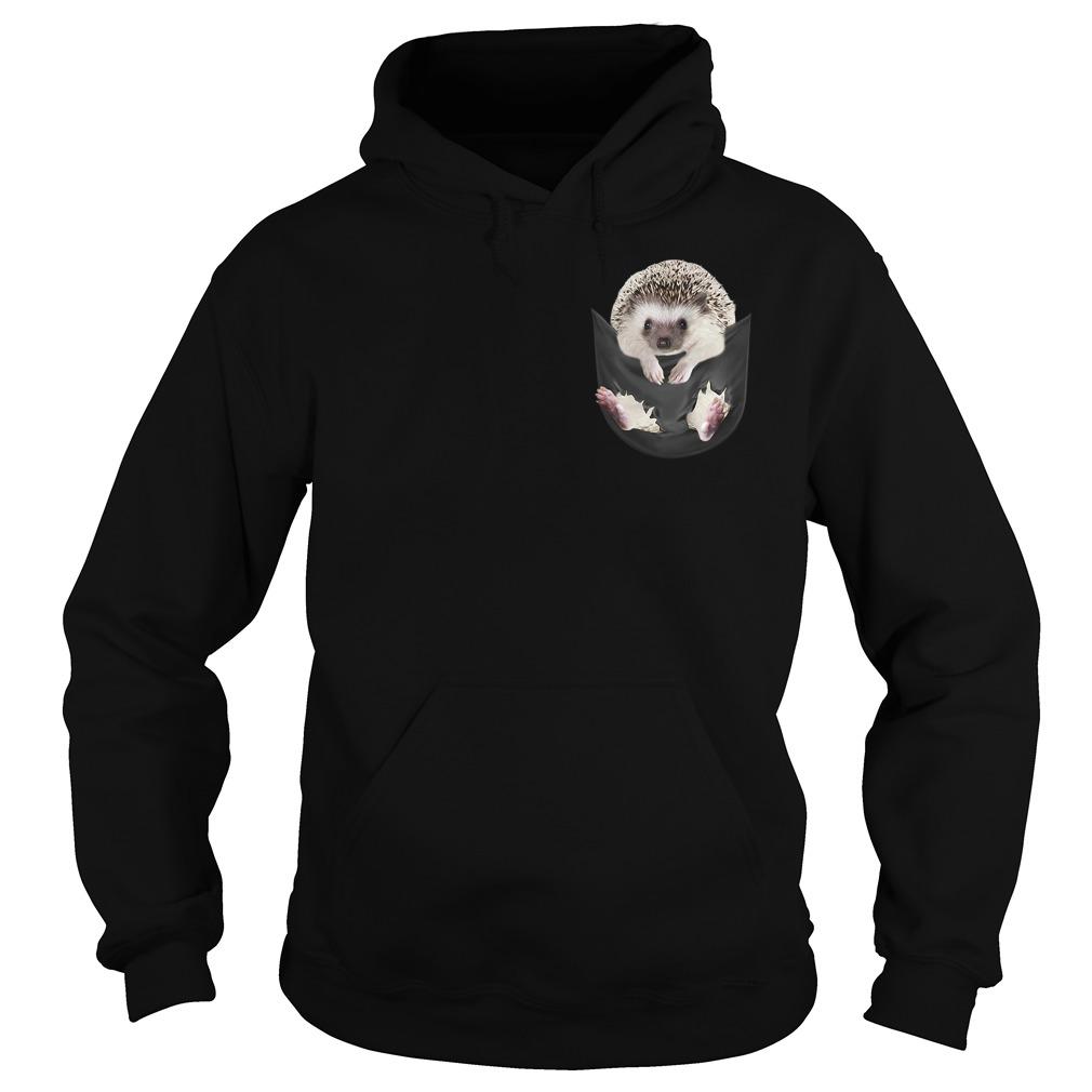 Hedgehog in a pocket Hoodie