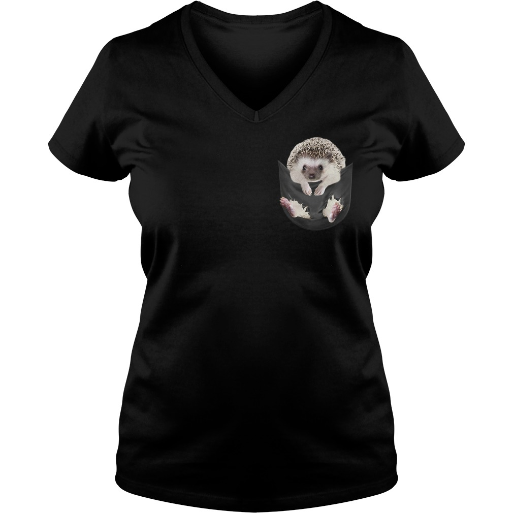 Hedgehog in a pocket V-neck T-shirt
