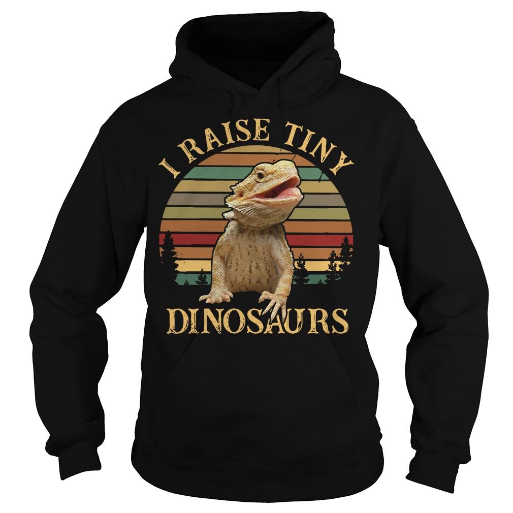 Sunset I raise tiny dinosaurs Hoodie