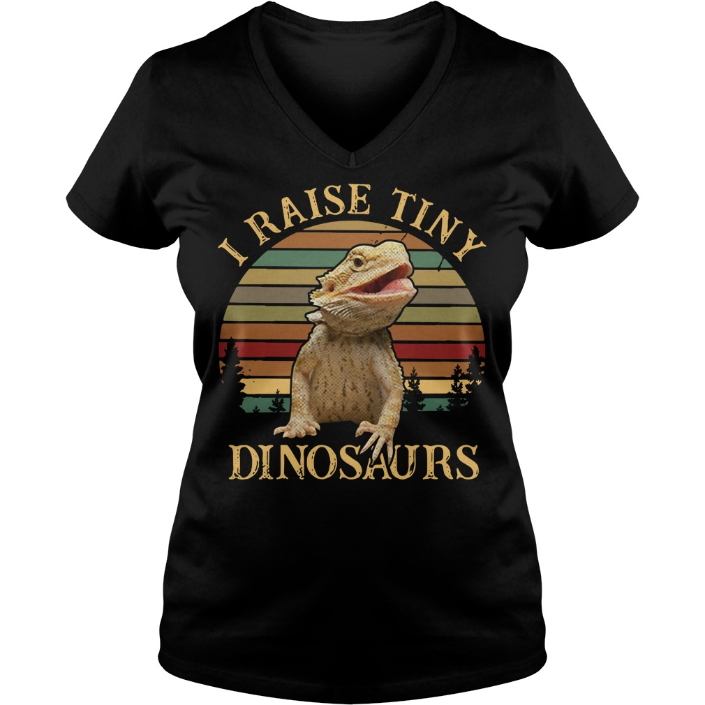 Sunset I raise tiny dinosaurs V-neck T-shirt