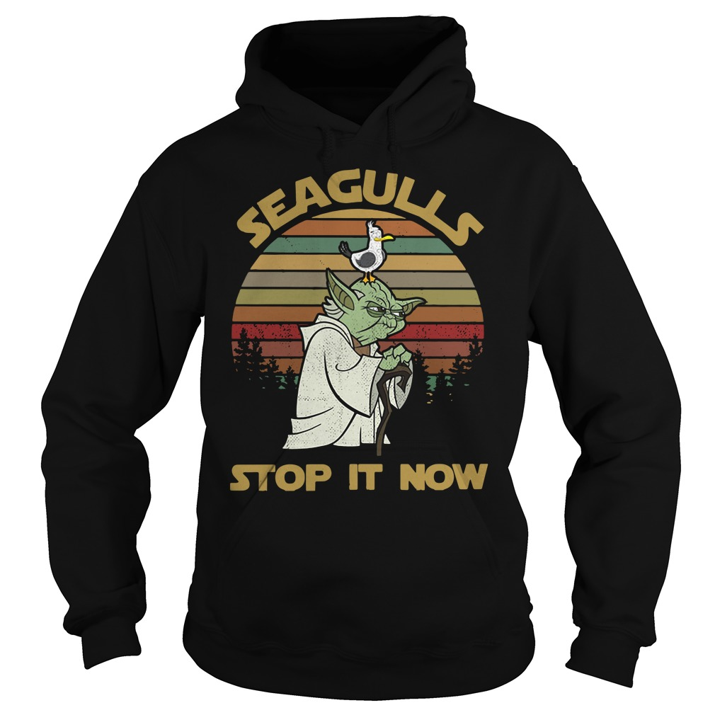 Sunset retro style Seagulls stop it now Hoodie
