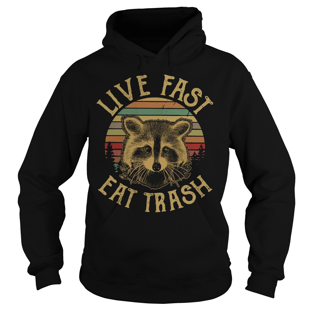 The sunset Raccoon live fast eat trash Hoodie