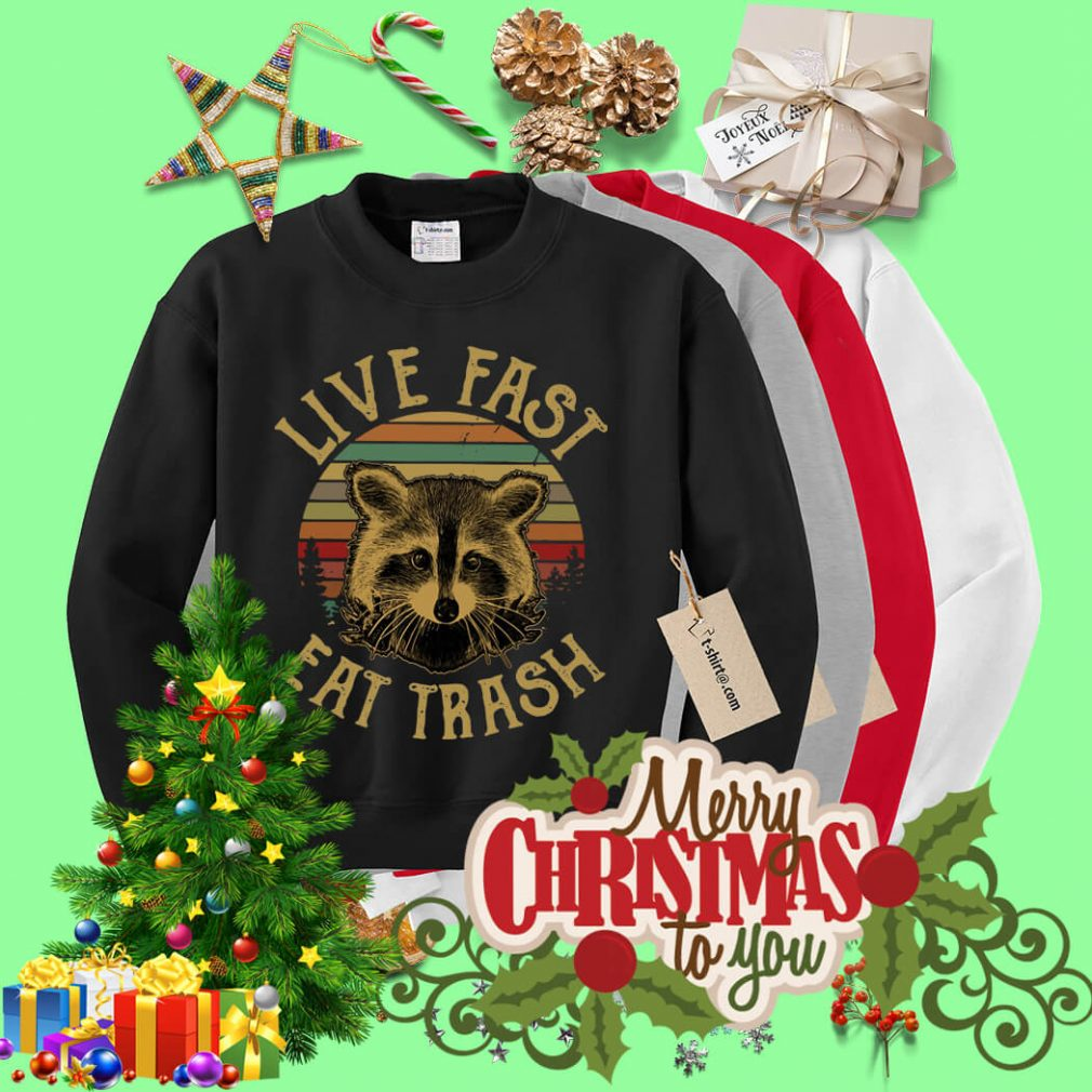 The sunset Raccoon live fast eat trash Sweater