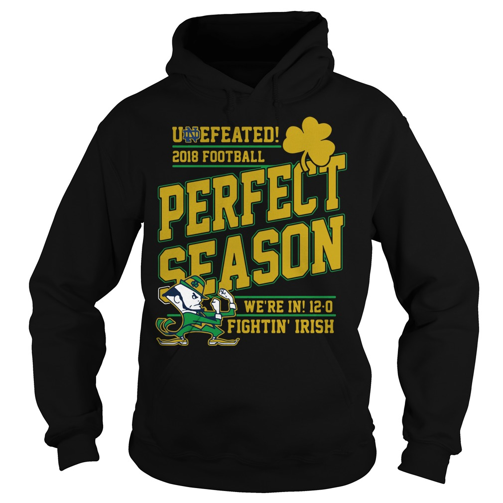 Undefeated 2018 football perfect season we're in 12-0 fightin' Irish Hoodie