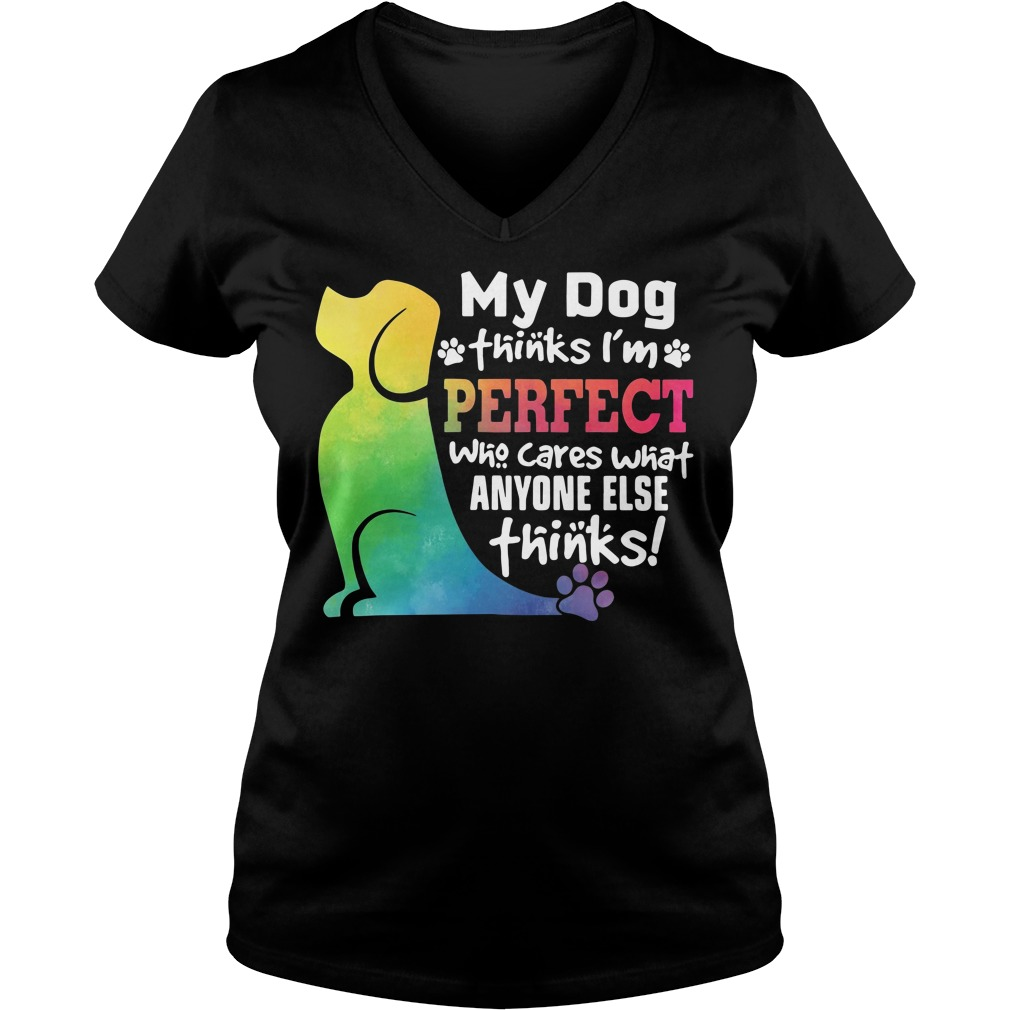 My dog thinks I'm perfect who cares what anyone else thinks V-neck T-shirt