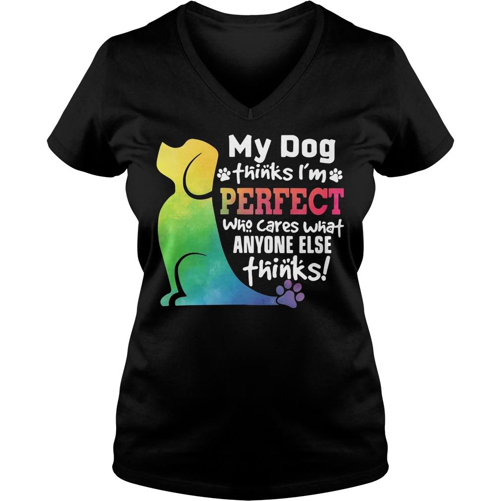 My dog thinks I'm perfect who cares what anyone else thinks V-neck T-shirt
