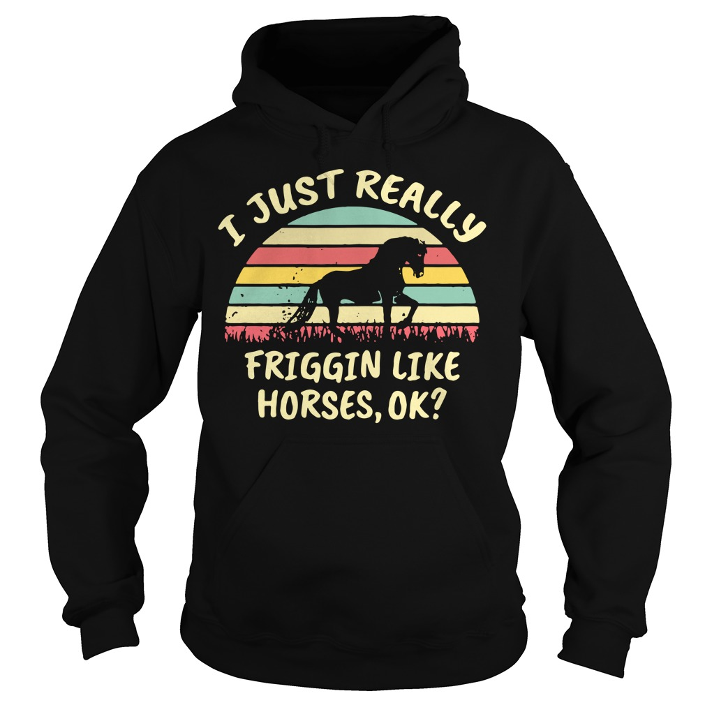 I just really friggin like horses ok sunset retro Hoodie