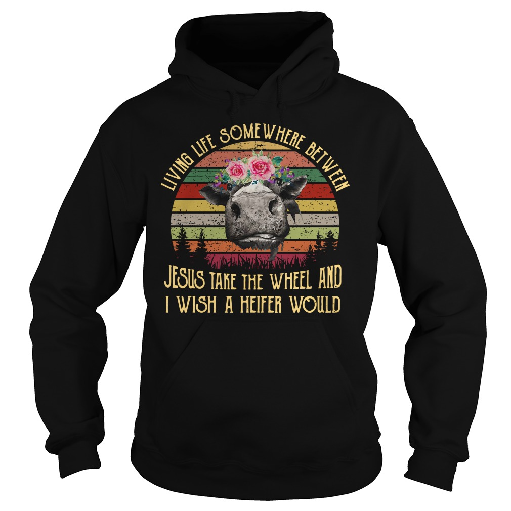 Jesus take the wheel and I wish a Heifer would vintage Hoodie
