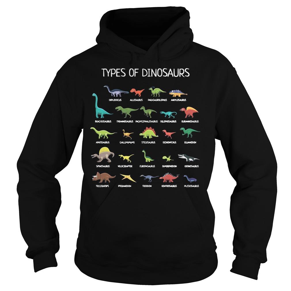 Types of Dinosaurs Hoodie