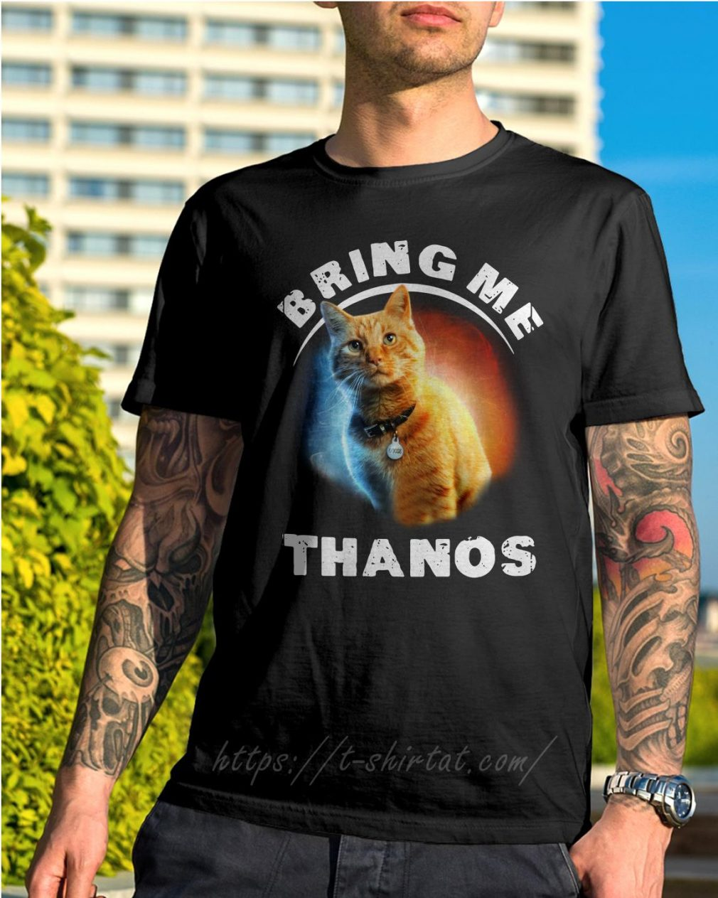 Cat bring me Thanos shirt