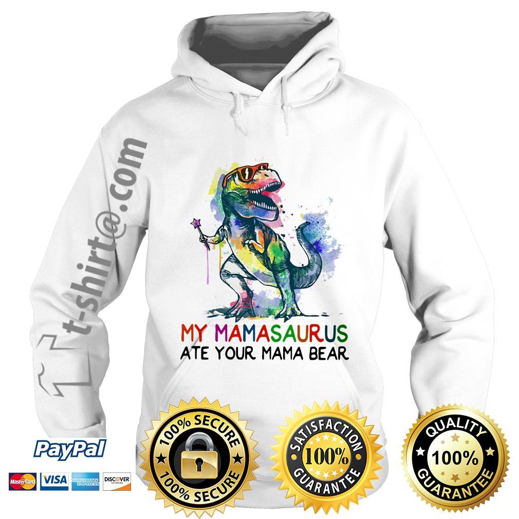 LGBT Dinosaur T-rex my Mamasaurus ate your mama bear Hoodie