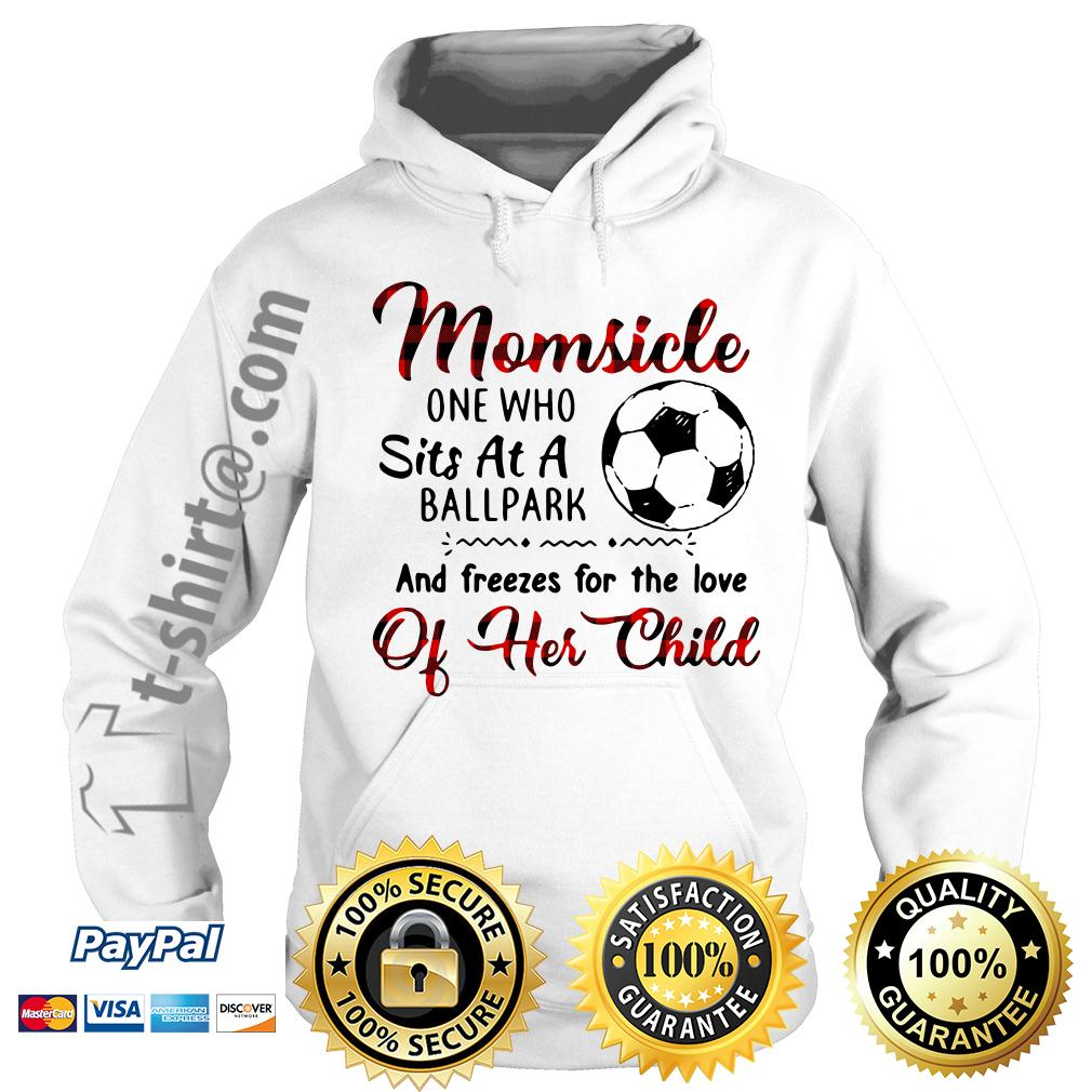 Soccer Momsicle one who sits at a ballpark and freezes for the love Hoodie