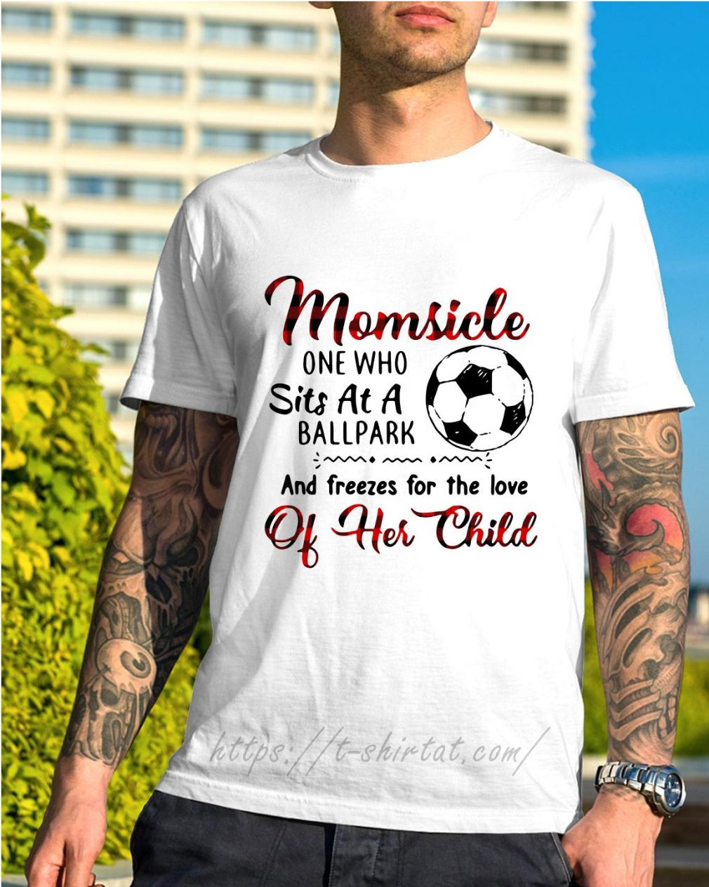 Soccer Momsicle one who sits at a ballpark and freezes for the love shirt