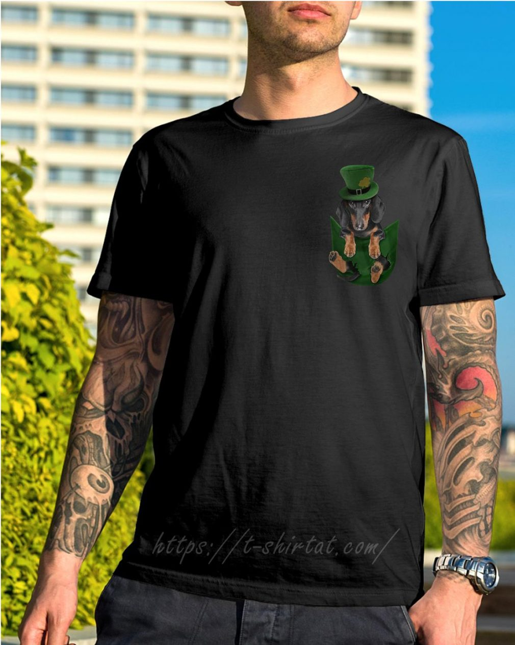 St Patrick's Dachshund in a pocket shirt