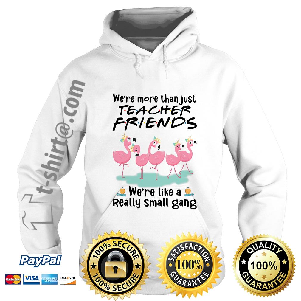 Flamingo we're more than just teacher friends we're are like a really small gang Hoodie