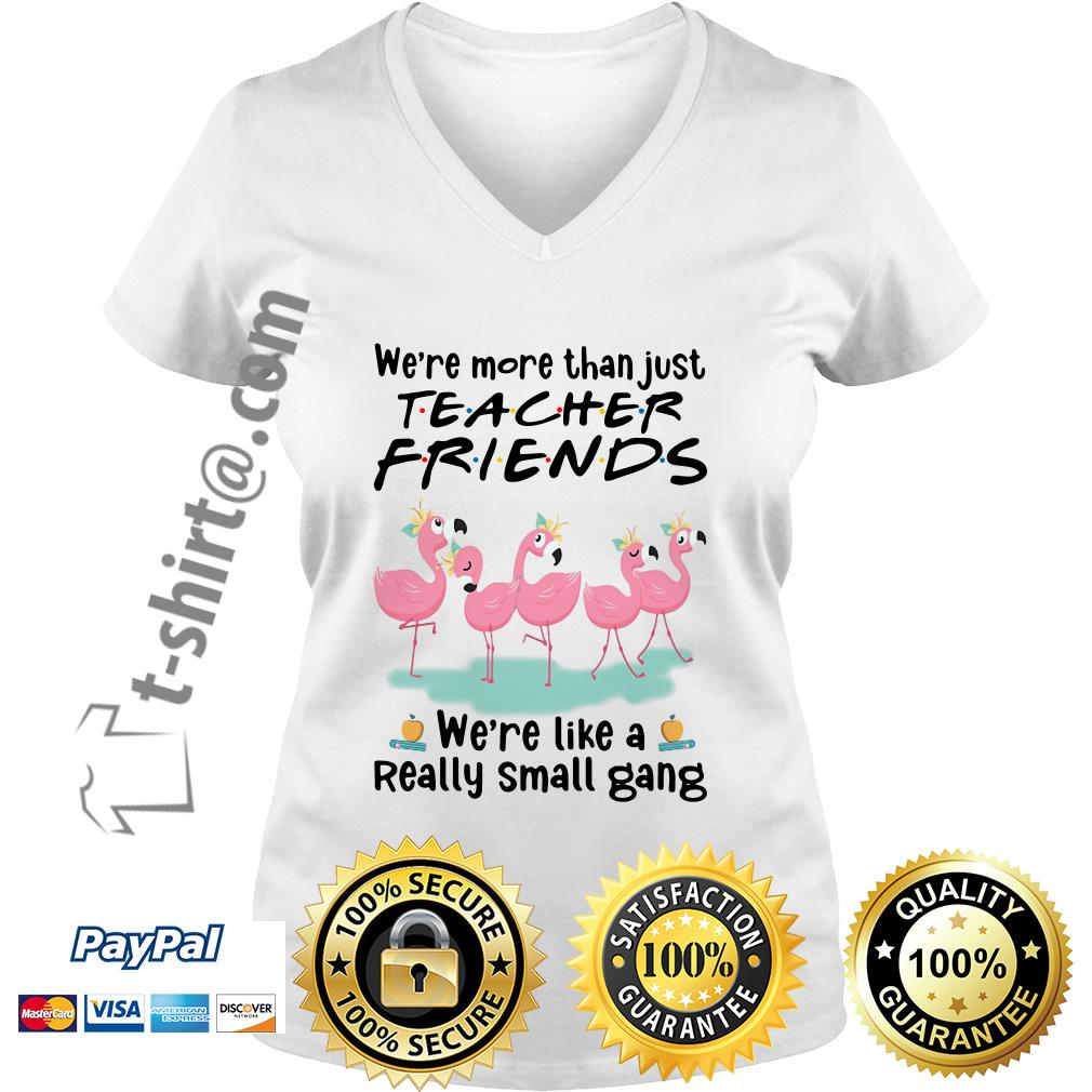 Flamingo we're more than just teacher friends we're are like a really small gang V-neck T-shirt