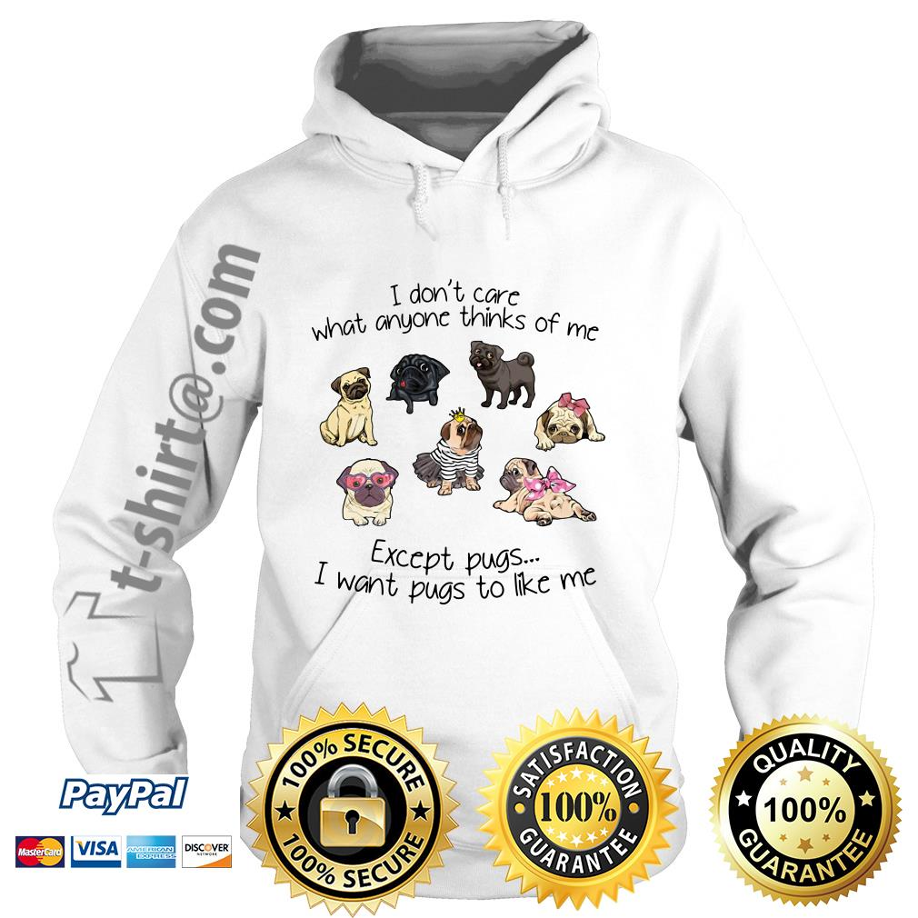 I don't care what anyone thinks of me excepts pugs I want pugs to like me Hoodie