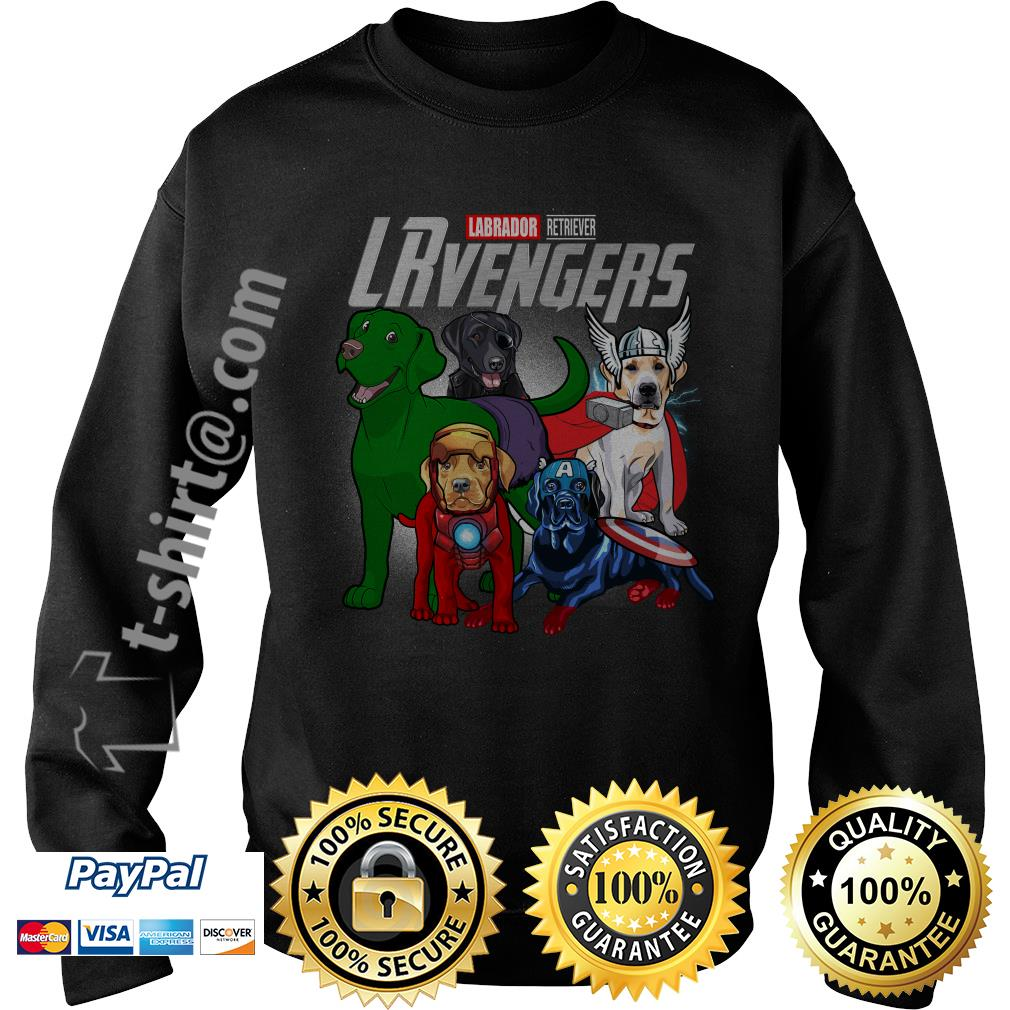 Marvel Labrador Retriever LRvengers Sweater