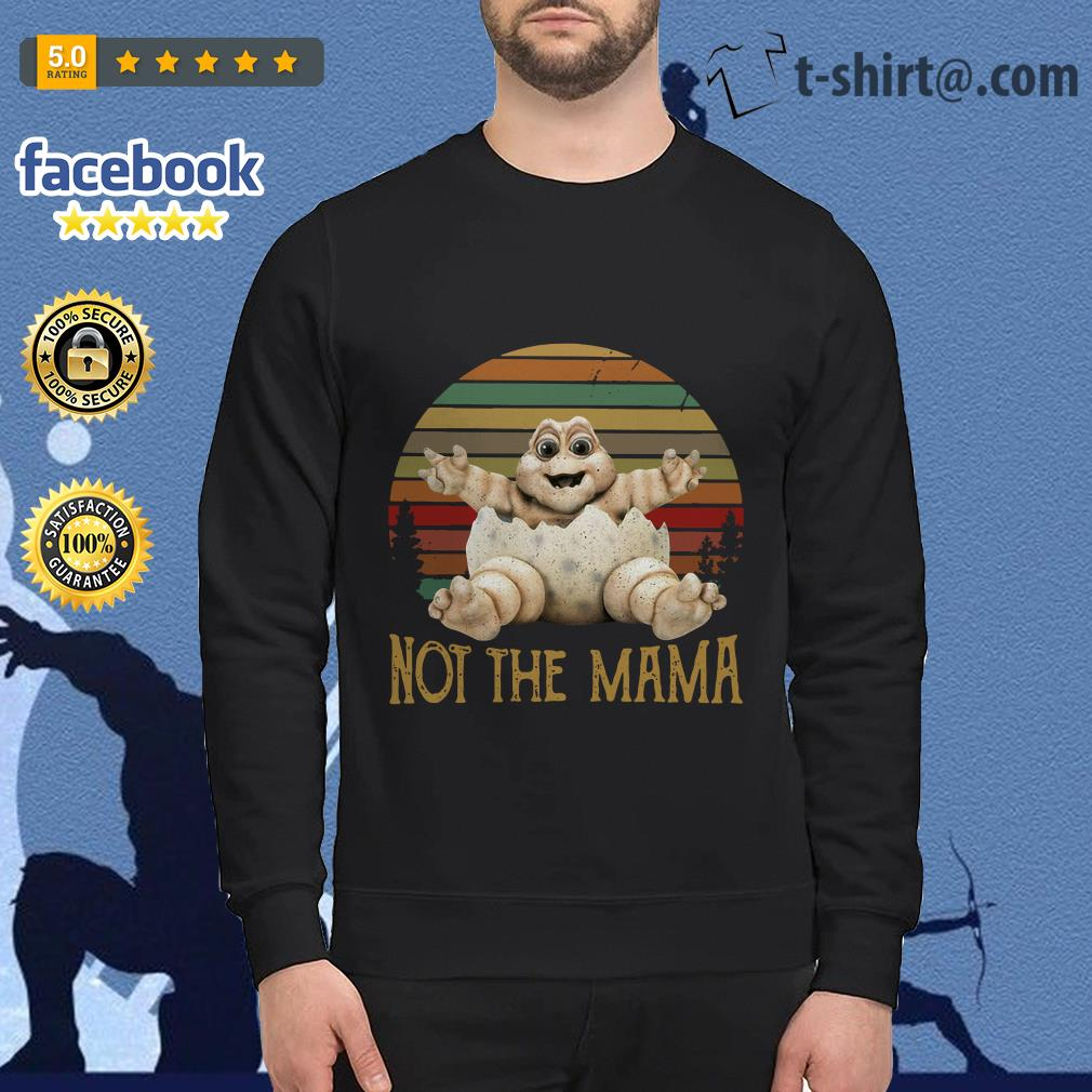 Baby Sinclair TV show 90's not the mama vintage Sweater