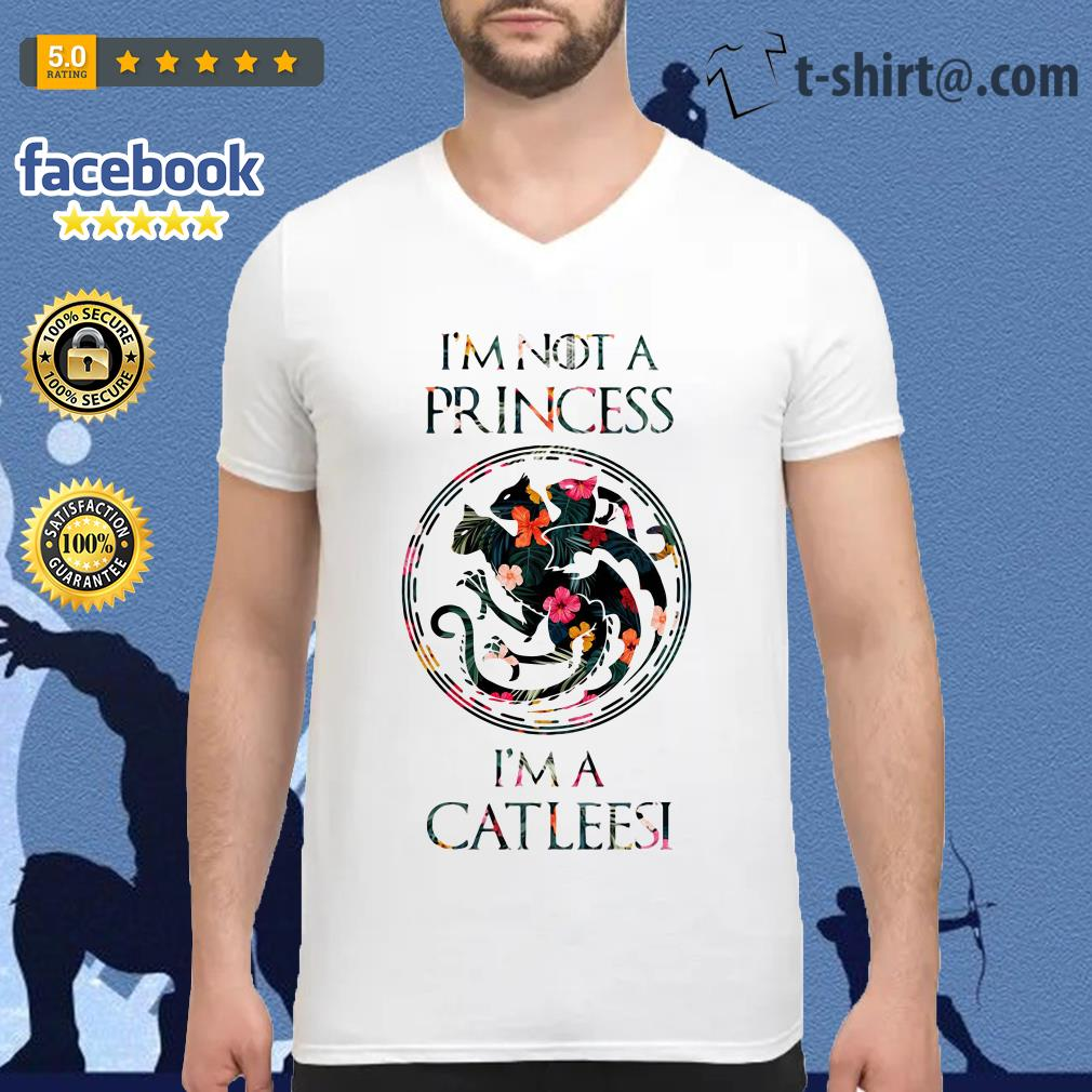 I'm not a princess I'm a Catleesi Drago V-neck T-shirt