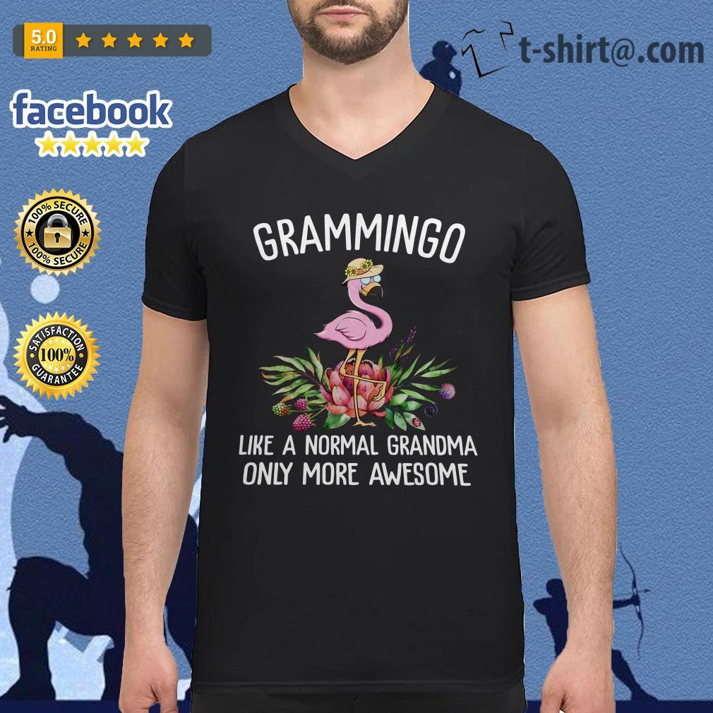 Flamingos Grammingo like a normal grandma only more awesome V-neck T-shirt