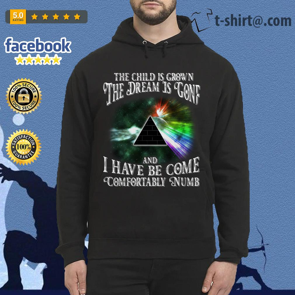 85051287 Pink Floyd the child is grown the dream is gone I have become comfortably  numb Hoodie