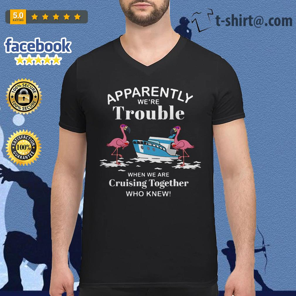 Flamingo apparently we're trouble when we are cruising together who knew V-neck T-shirt